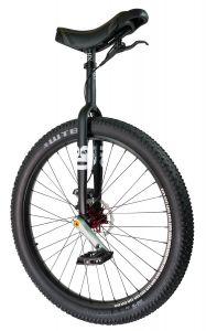 QX RGB Muni Einrad mit Scheibenbremse - schwarz- 29 Zoll